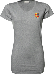shirt 455_alumni logo_heather grey_nyenrode
